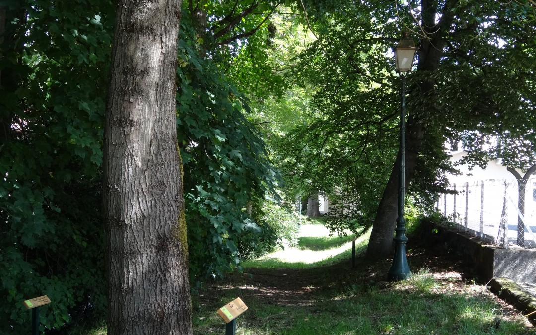 2015 : Création de deux sentiers autour d'Izaut