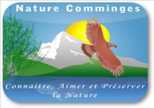 logo-nature-cges