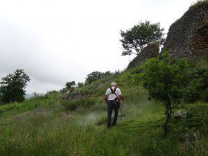 Château Izaut débroussaillage