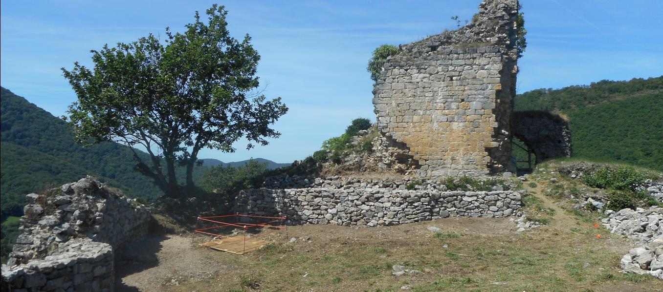 La Tour depuis la cour intérieure
