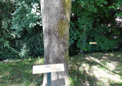 Sentier de l'Ecole 2