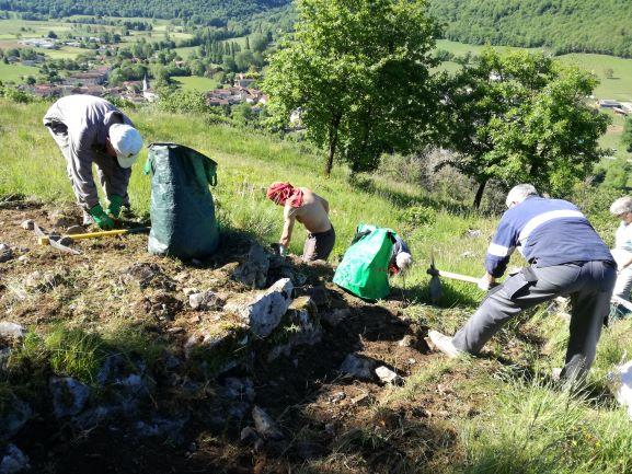 2019 : Préparation du terrain pour les fouilles