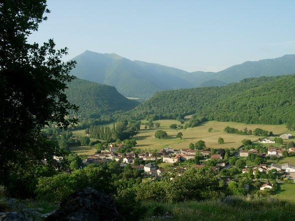 2021 : Flore du mois de Juin au Château